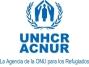 logo_acnur_def_